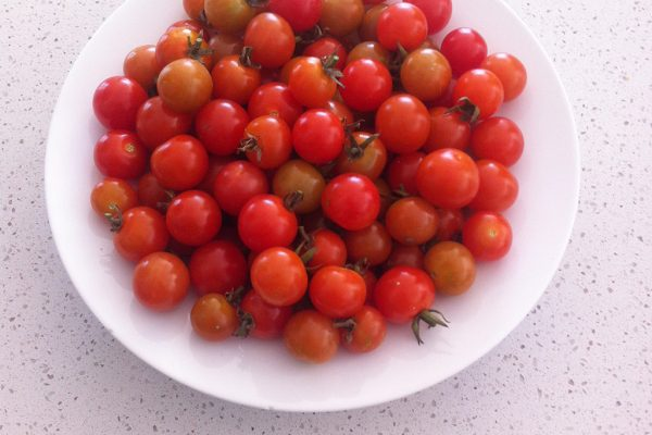 140826-Joshs-House-Food-Garden-Shots-JB-4-WE